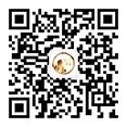 BetCity666 Wechat QR Code