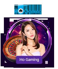 Live Casino HoGaming