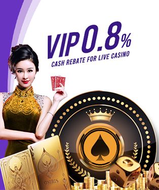 Live Casino VIP 0.8% Cash Rebate